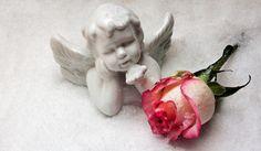 Angel, Angel A Szám, Rózsa, Hó, Karácsony
