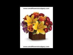 Envoyer des fleurs de Brownsburg Chatham Québec à Calgary en Alberta https://calgaryflowersdelivery.com