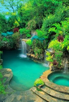 Tropical pool and spa