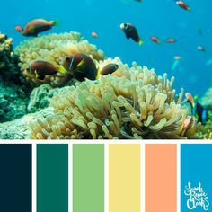 Underwater bright colors // These 25 color combinations are inspired by beautiful scenes underwater. Click to see all 25 color palettes for underwater color inspiration for art projects, coloring or paint pouring at www.sarahrenaeclark.com #colorscheme #colorinspiration #colorideas