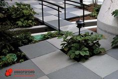 Gardening and water detail in HydraPressed Slab tiling by Abbotsford Concrete
