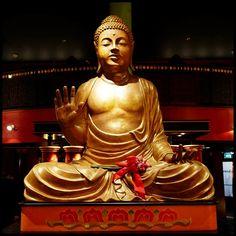 Little Buddha Amsterdam Nederland - Restaurant, Sushi & Lounge Bar - Sister venue of Buddha-Bar Paris