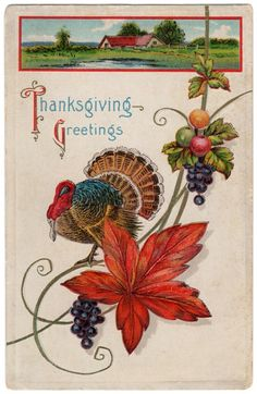 vintage thanksgiving images | ... images like these like printing enlarged images to paper and framing