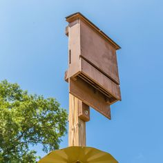 Use Bat Houses for Mosquito Control - Nature and Environment - MOTHER EARTH NEWS