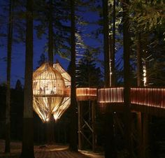 New Zealand, Redwood Treehouse Restaurant, design: Pacific Environment Architects
