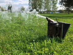 A bee smoker is one of those tools that I always have with me when I work with bees. And I know how difficult it… Bee Smoker, Bee Company, Beekeeping For Beginners, Beekeeping Equipment, The Burrow, Bee Supplies, The Fox And The Hound, Smokers, Bee Keeping