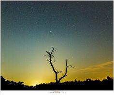 Vallende sterren kijken in Nederland   Zomerse meteorenregen - Paradijsvogels Magazine