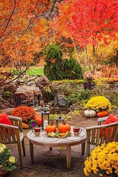 Garden Tour: Autumn Alfresco In this Chicago-area home's landscape, intimate retreats and brilliant fall color create fresh reasons to linger outdoors. Fröhliches Halloween, Feliz Halloween, Flora, Autumn Scenes, Fall Pictures, Patio Pictures, Autumn Photos, Autumn Garden, Fall Harvest
