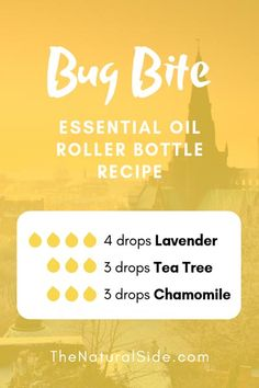 Searching for easy ways to use essential oils? In this post, you will find 15 beginners inspired essential oil roller bottle recipes which is one of the easiest ways to start using essential oils. Helichrysum Essential Oil, Chamomile Essential Oil, Doterra Essential Oils, Young Living Essential Oils, Essential Oil Diffuser, Essential Oil Blends, Bug Bite Essential Oil, Lavender Essential Oil Uses, Yl Oils