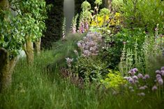 See more of this garden at Healing Herbs: A Modern Apothecary Garden at the Chelsea Flower Show. Photograph by Jim Powell for Gardenista.
