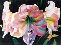 Gallery of Original Watercolor Paintings :: Ann Pember