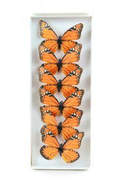 Scrapbooking - Farfalle con Clip Arancioni pz. 6 - un prodotto unico di raffasupplies su DaWanda