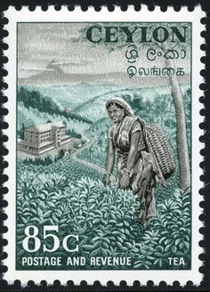 King George VI Postage Stamps: Ceylon 1951 (1 Aug)