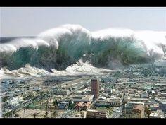 Giappone Tsunami Fukishima 21-11-2016 In Diretta Terribili immagini