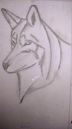 sketches, wolf looking through your soul Wolf, Sketches, Tattoos, Animals, Drawings, Tatuajes, Animales, Animaux, Tattoo