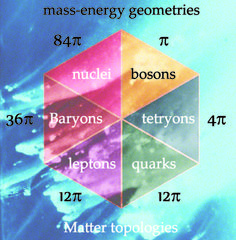 Just as mass is different to Matter, geometry is different to Topology  While quarks and leptons both have 12pi mass-energy geometries, their Matter topologies are quite distinct due to the Strong force between charged fascia - quarks form octahedral quantum topologies, leptons form dodecahedral quantum topologies.............