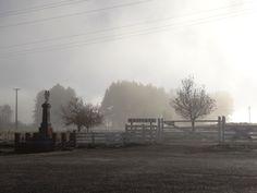 Waipiata on a frosty autumn morning