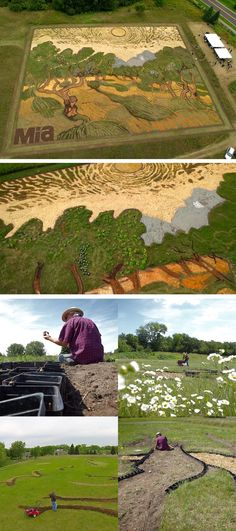"Artist Stan Herd Plants a 1.2-Acre Field Inspired by Van Gogh's 1889 Painting ""Olive Trees"""