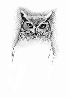 Great Horned Owl Black And Grey Tattoo 1000+ images ab...