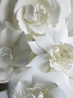 Ann Martin's All Things Paper explores creative paper art and paper craft. She wants you to be inspired to look at paper in a new light. White Paper Flowers, Paper Flower Wall, Diy Flowers, Fabric Flowers, Giant Flowers, Paper Roses, Diy Paper, Paper Art, Paper Crafts