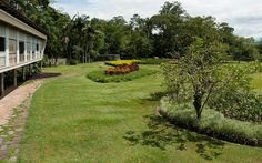 the path! OlivoGomes Residence, Roberto Burle Marx / 4950 and 1966. Now the Parque da Cidade Roberto Burle Marx. The park is an amenity for local people but the Rino Levi-designed building has been rather neglected. source: Malcolm Raggett Photography.