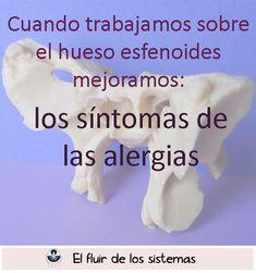 Cuando trabajamos el esfenoides mejoramos los síntomas de las alergias.