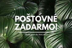 Oddnes môžete využiť DOPRAVU ZADARMO na všetky objednávky na SR aj ČR ♥️ Táto akcia platí len týždeň, presnejšie do polnoci 10.6. :)