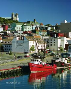 St John's, Newfoundland - saw pretty much this exact view, was amazing, take me back to summer 2013!!!