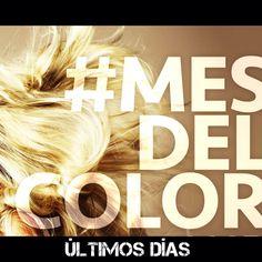 Lo mejor del #mesdelcolor