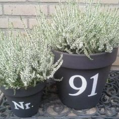 Outside the front door Garden Living, Home And Garden, Scandinavian Garden, Front Door Decor, Front Porch, Terrace Garden, Gardening, Green Life, House Numbers