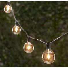 Table in a Bag Vintage String Party Lights - 25-Feet/25 Sockets - Bulbs Included LS2525-CLEAR