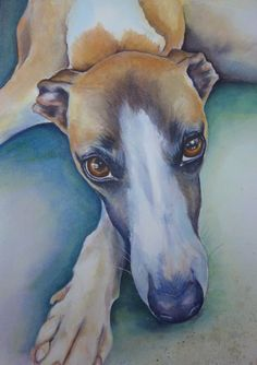 Whippet Painting Pet Portrait by Diane Young