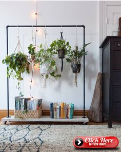 Changing a clothes rack for a hanging plant stand! Maybe make with copper #einen #anhanging #kleiderstanders
