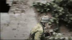 17th SS Panzergrenadier Division Götz von Berlichingen and Fallschirmjäger-Regiment 6 (from the 2. Fallschirmjäger-Division) in the Carentan area of the Cotentin Peninsula, near the US 101st Airborne Division's drop zones. June 1944. Battle of Normandy.