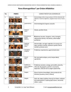 CENTRO DE ESTUDIO E INVESTIGACIÓN DE BIOMAGNETISMO HOLÍSTICO Y TÉCNICAS BIOENERGÉTICAS PARA EL DESARROLLO HUMANO A.C. 1 Co...