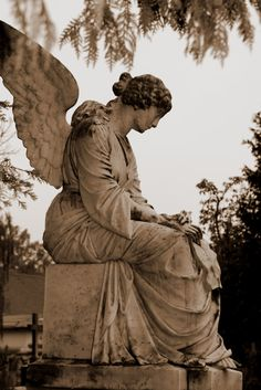 Fly away my angel, Spread your wings and fly; Take the beauty of your soul, And share it with the sky.  -Allison Chambers Coxsey Cemetery Angels, Cemetery Statues, Cemetery Art, Old Cemeteries, Graveyards, Angel Art, Angel Wings, Angels Among Us, Guardian Angels
