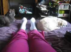Legs of Truce Day 39 by Beth · 365 Project