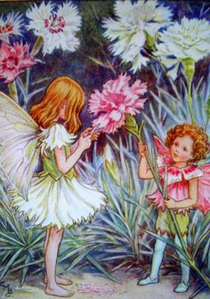 1930s PINK FAIRY Cicely Mary Barker PRINT by sandshoevintageprint