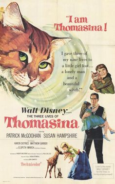 thomasina the cat - Google Search