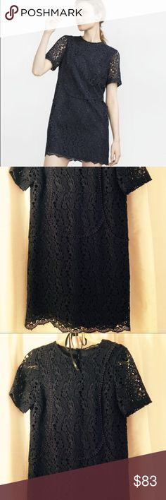 Zara Navy Lace Crochet Dress Classic and intricate lace dress. Heavy lace in deep navy. Mint condition, never worn. Fits small. Zara Dresses Mini