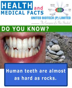 Health and Medical Fact