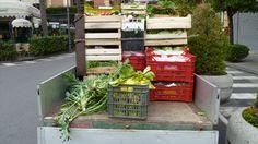fresh veggies - Sorrento, Italia