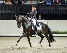 In my opinion riding accurate figures comes down to focus, planning and attention to detail. It is very important that we ride proactively and not reactively. We have to prepare our horse for what is