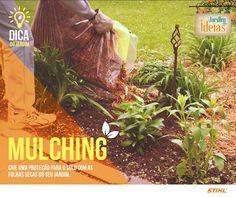 Se não quiser fazer composto com as folhas caídas do seu jardim, faça pilhas e as compacte. Assim, obtém-se o que se chama de mulching, um material seco que pode se colocar ao redor de árvores, na horta e dentro de canteiros para evitar o aparecimento de ervas daninhas e preservar os nutrientes do solo.