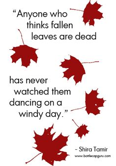 Autumn Quote On Fallen Leaves.  #autumn #poem #quotes #quote #QOTD #fall
