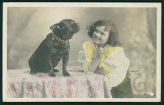 French Bulldog Dog seated on table with Girl original old c1900s photo postcard
