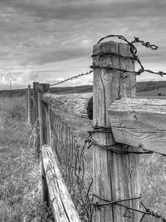 Fence And Wire Photograph - Fence And Wire Fine Art Print Cowboy Photography, Art Photography, Rustic Photography, Black And White Sketches, Black And White Pictures, Farm Pictures, Old Pictures, Country Fences, Rustic Fence