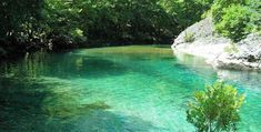 Ο Βοϊδομάτης στο Φαράγγι του Βίκου είναι παράδεισος για όσους αγαπούν το κολύμπι, επισημαίνει άρθρο του Cnn, που ξεχωρίζει 20 μέρη από όλο τον κόσμο στα οποία αξίζει κανείς να απολαύσει ένα μπάνιο. Ο Βοϊδομάτης, γνωστός και ως «ποτάμι του Βίκου» είναι παραπόταμος του Αώου και οι κύριες πηγές του βρίσκονται κάτω από το χωριό […] The post Βοϊδομάτης: Ο «παράδεισος» του κολυμβητή σύμφωνα με το Cnn appeared first on NewSide.gr. Greece, Dream Land, River, Outdoor, Greece Country, Outdoors, Outdoor Games, The Great Outdoors, Rivers