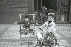2013年 中國深圳─岳陽