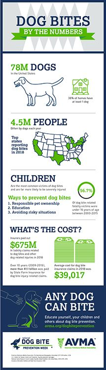 National Dog Bite Prevention Week® takes place during the second full week of April each year, and aims to educate people about preventing dog bites Puppy Obedience Training, Training Your Puppy, Dog Training Tips, Dogs And Kids, Animals For Kids, Dog Safety, Safety Tips, Mini Goldendoodle, Dog Hacks